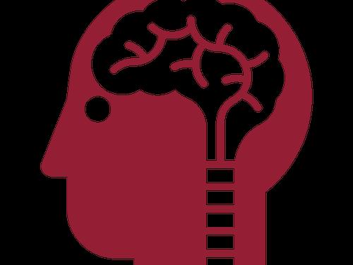 Vitaminy skupiny B mají pozitivní vliv na zdraví mozku