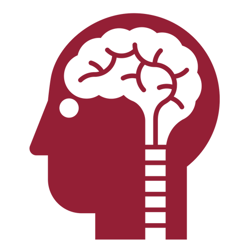 Suplementace folátem snižuje riziko cévní mozkové příhody u některých pacientů s hypertenzí